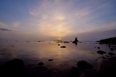 静かな春の雨晴海岸 かすかな日の出