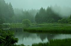 霧の平池1