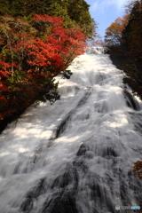 木漏れ日の湯滝