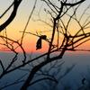 筑波山山頂からの夕焼け02
