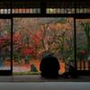 光明禅寺2009