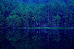 森深き幻の地