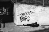 鳥のように自由に