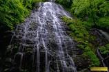 新緑の龍双ヶ滝 Ⅲ