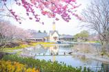 春の教会 Ⅰ