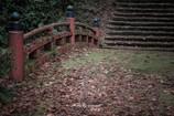 晩秋の横蔵寺 12