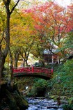 秋の横蔵寺 7