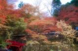 秋の横蔵寺 10