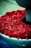 溢れんばかりの愛 Ⅱ