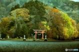 神聖なる島 宇賀神社