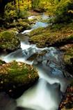 宇津江の流れ 2