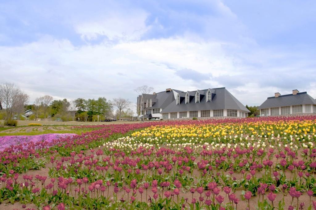 春色の高原 2