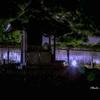 藤まつりの夜 Ⅴ