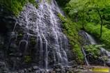 新緑の龍双ヶ滝 Ⅳ