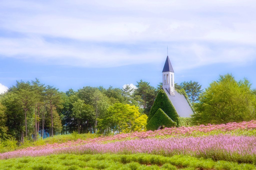蔦からむ教会