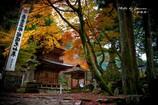 晩秋の横蔵寺 8