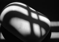 FUJIFILM X-Pro2で撮影した(frequency 1693)の写真(画像)