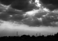 FUJIFILM X-Pro2で撮影した(frequency 1618)の写真(画像)