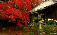 紅葉の小寺