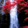 滝を彩る紅葉