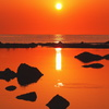 洛陽 日本海