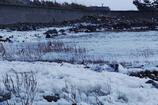 雪では ありません・・・波の花