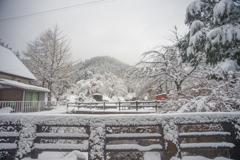ここは神奈川・・・