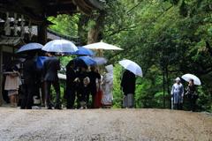 春日の花嫁
