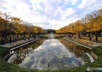 CANON Canon EOS M3で撮影した(昭和記念公園)の写真(画像)