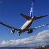 B-787 華麗なる翼