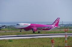 南ぬ島 石垣空港 A320-200