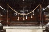 雨降りの神社