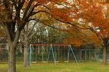 秋・公園風景