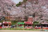 岡崎公園2