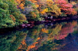 秋色を映して