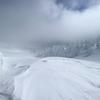 4EVの雪原