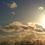 CANON Canon EOS M3で撮影した(- Eternally   #1 -)の写真(画像)