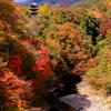 錦秋の渓谷 2