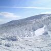 W!nter ZAO !!! (Snow monster)