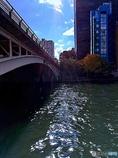 川辺から見た風景