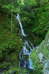 琵琶の滝右岸の無名滝
