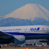羽田で見る富士