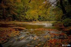 秋の渓谷 3