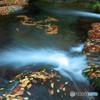 秋の渓谷 2