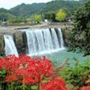 滝と彼岸花