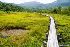 浄土平湿原 - 夏 -