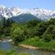 残雪の白馬三山と緑深き大出公園