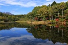 色づき始めた木々と秋の空