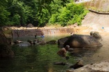 川の中の温泉