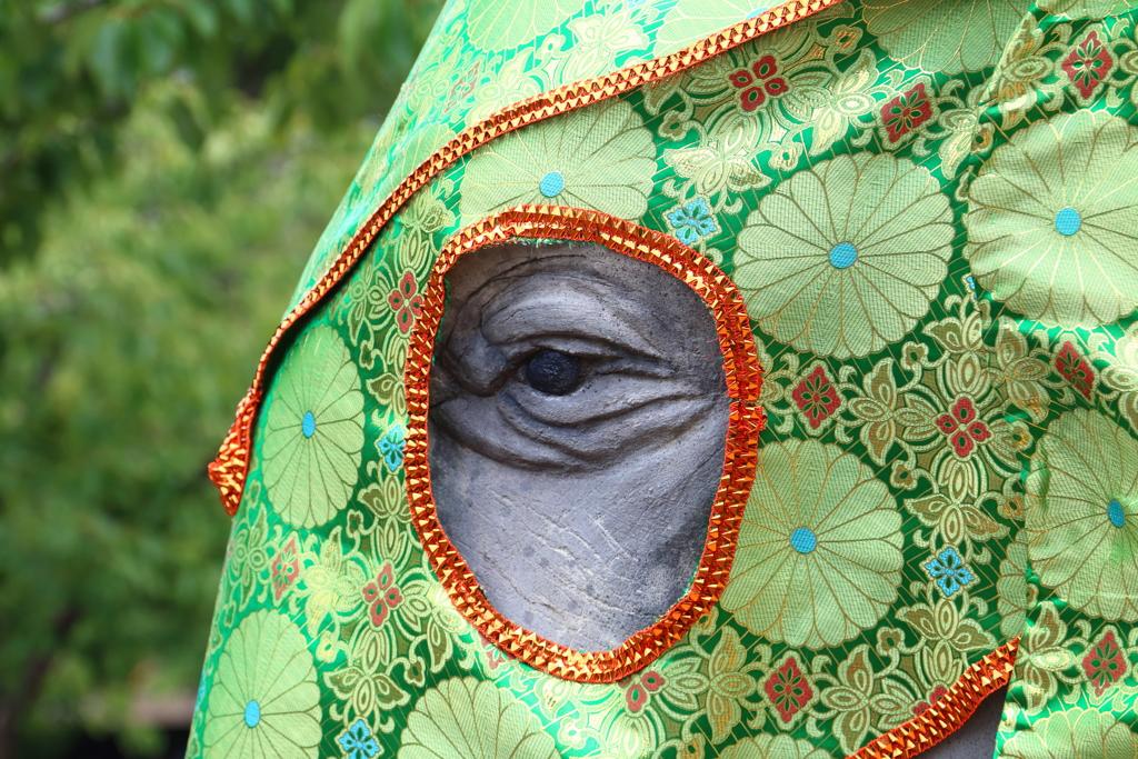 象の像のマスク